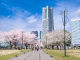 汽車道 | 歴史情緒あふれる人気エリア、「横浜赤レンガ倉庫」周辺を巡ろう!