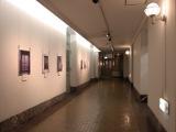 神奈川県立歴史博物館 | ハマスタや横浜三塔を有する歴史的な「関内・馬車道」エリア巡り