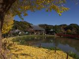 称名寺 | 横浜金沢エリアの「横浜・八景島シーパラダイス」とその周辺を巡ろう!