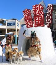 秋田県観光イベント「こでられね~秋田大集合」