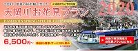 大岡川お花見プラン2020