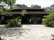 横浜自然観察の森「3月の行事予定」