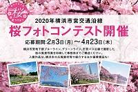 2020年横浜市営交通沿線 桜フォトコンテスト開催