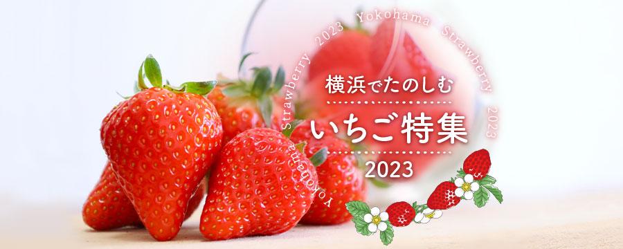 【特集ページ】横浜でたのしむ いちご特集2021